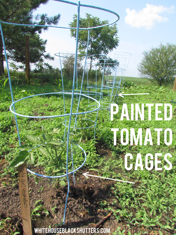 Spray Painted Tomato Cages!