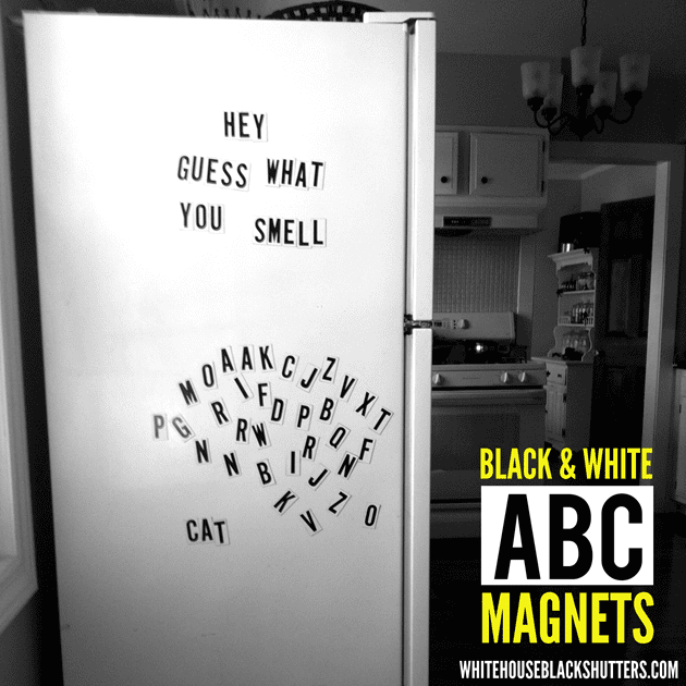 Black and White ABC Magnets