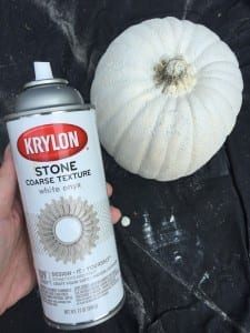 faux concrete pumpkin planter, made from a craft pumpkin!