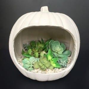 faux concrete pumpkin planter, made from a craft pumpkin!