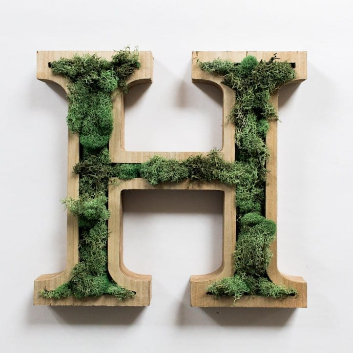 Wooden letter art with real moss added for texture. This is beautiful and easy to make!