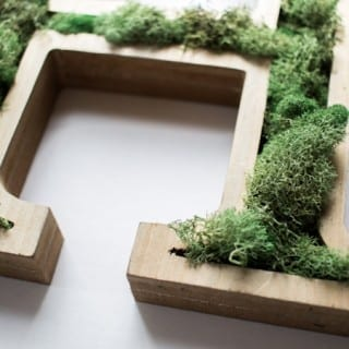 This is beautiful!! Wooden letter art with real moss added for texture. Easy and inexpensive project.